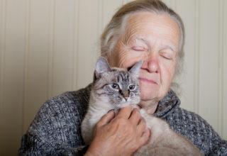 Tyytyväinen vanhus lemmikki sylissä